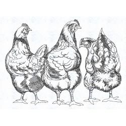 Stickerei Huhn1