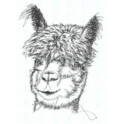 Stickerei Lama1